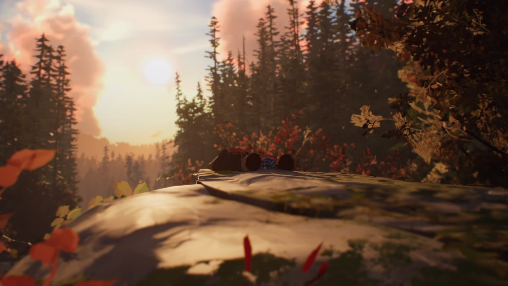 screen z gry life is strange 2: roads