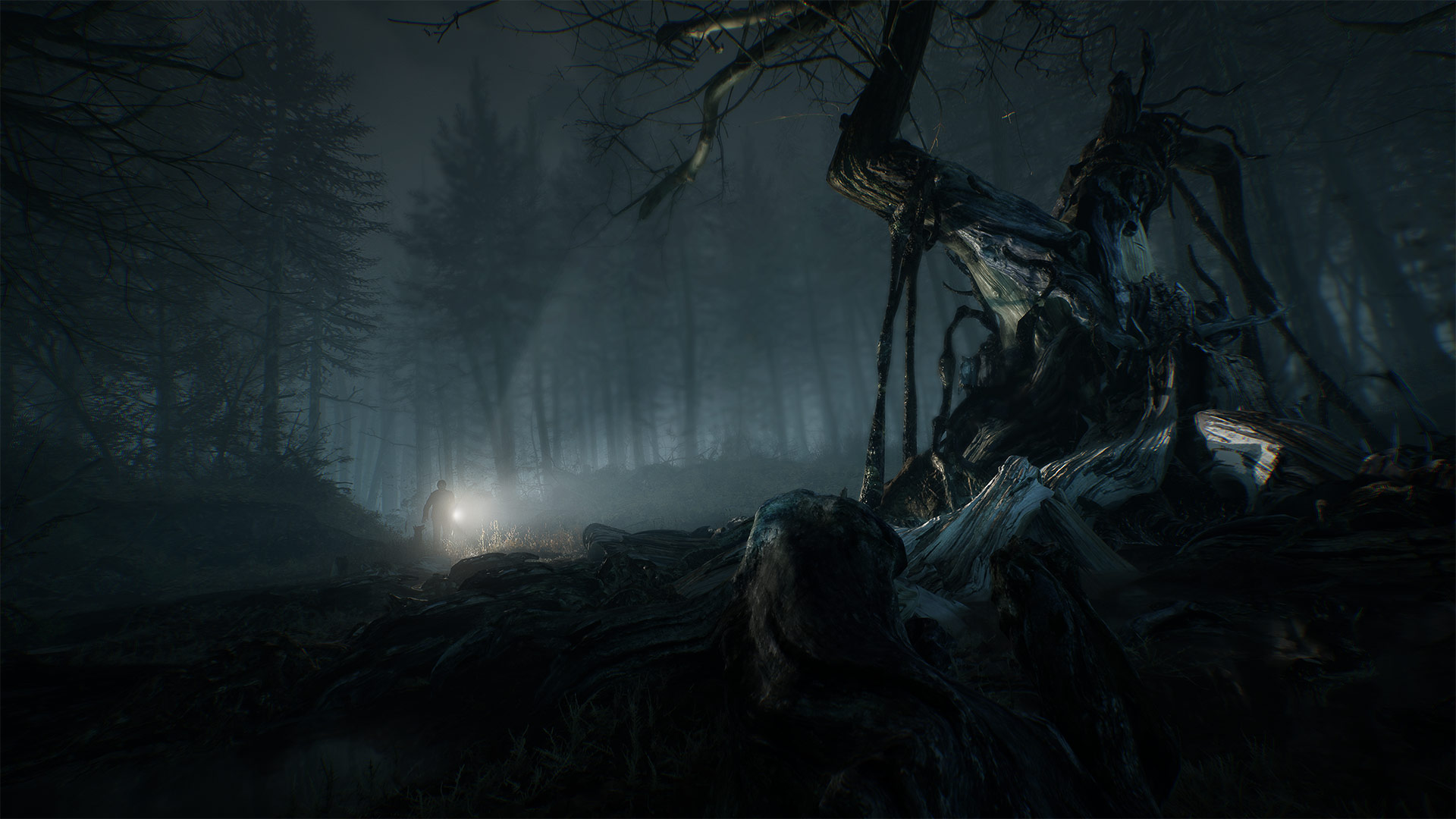 blair witch na gamescom 2019