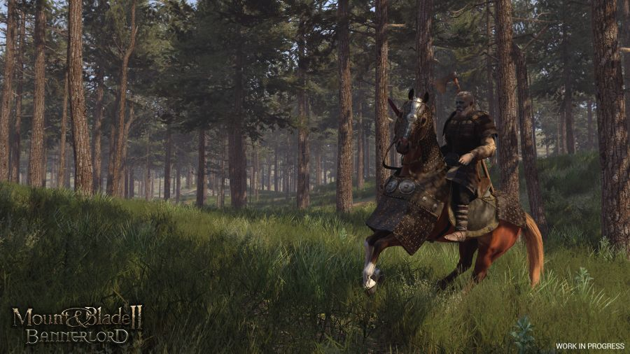 mount and blade ii bannerlord na gamescom 2019