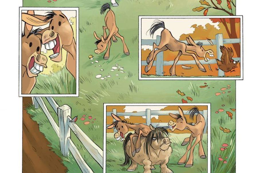kadr z okladki komiksu kamila i konie - miłość oceana