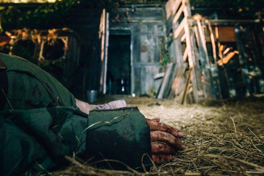 recenzja filmu w lesie dziś nie zaśnie nikt