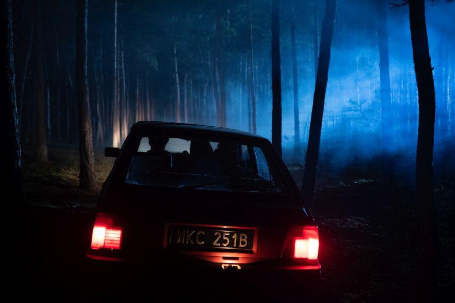 W głębi lasu to polski serial wyprodukowany dla Netflix