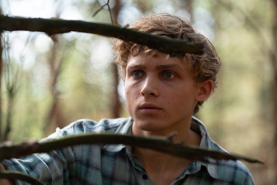 recenzja serialu w Głębi lasu